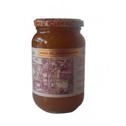 Miel de Châtaigner - 500g